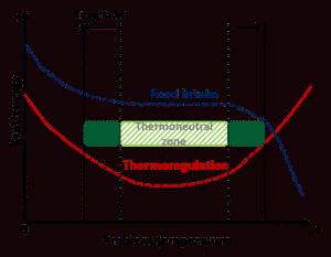 استرس گرمایی در طیور,خرید استرس پک,خرید خوراک دام و طیور,قیمت نهاده ها