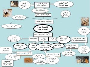 پرورش طیور,پرورش دام و طیور,سموم قارچی,سموم قارچی خوراک,رشد قارچ