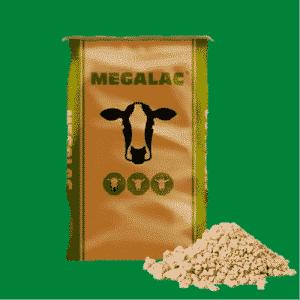پودر چربی دام سنگین ، قیمت پودر چربی مگالاک ، خرید پودر چربی